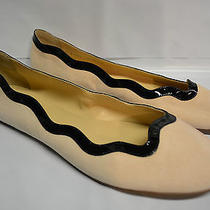 J Crew Scalloped Suede Ballet Flats Size 11 Blush Stone Photo