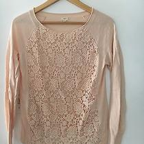 J.crew Women Popover Lace Sweater Size Small Pink Blush Photo