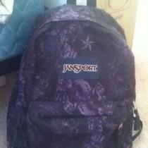 Jansport Backpack Black & Purple Photo
