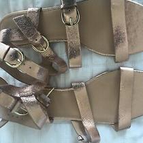 Jcrew Buckled Gladiator Sandal Rose Gold Size 9 New W/o Box Photo