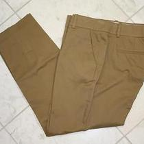 Jcrew Cafe Capri Pants Cropped Cotton Petite 90 Desert Tan P2 Photo