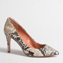 Jcrew Snakeskin Isabelle Printed Pumps 7.5 Heels Madewell Italian Leather Career Photo