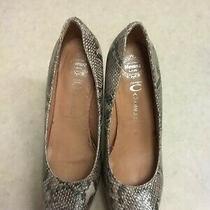 Jeffery Campbell Shoes Snakeskin Block Heels Size 9 Photo