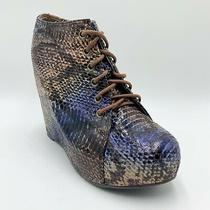 Jeffrey Campbell 99 Tie Blue Ombre Snakeskin Print Oxford Wedge Boot Women's 6.5 Photo