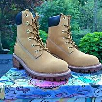 Jeffrey Campbell Construct Size 7 Lace-Up Suede Boot in Wheat Msrp 195 Photo