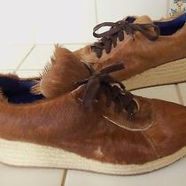 Jeffrey Campbell  Cow Hair Leather Wedge Tie  7.5 Adorable Photo
