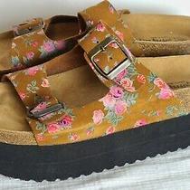 Jeffrey Campbell Floral Flatform Aurelia Sandal Eu 39 Cork Foot Bed Shoe  Photo
