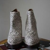 Jeffrey Campbell Ibiza Calf Hair Animal Print Bootie - Size 7 Photo