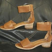 Jeffrey Campbell Natural Tan Leather Women's Ankle Strap Sandal Shoes Size Us 10 Photo