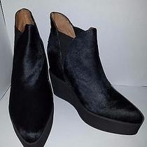 Jeffrey Campbell Priya Platform Booties Size 8m Nwb Photo
