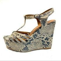 Jeffrey Campbell Shoes Swansong Snakeprint Platform Wedge Sandals Size 10 Photo