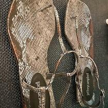 Jeffrey Campbell Snakeskin Sandal Size 7.5 Photo