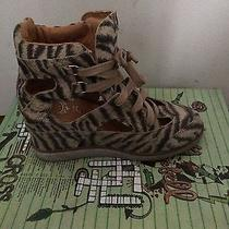 Jeffrey Campbell Sneakers Photo