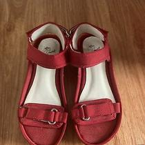 Jeffrey Campbell  Urban Outfitters Sandals 8  Photo