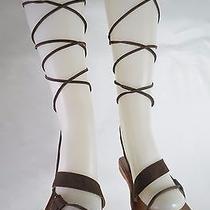 Jeffrey Campbell Women's Vista Gladiator Sandal Size 8 Photo