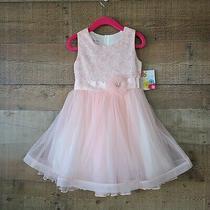 Jessica Ann Girls Blush Pink Dress Sz 4 Lace Full Skirt Lined Flower Easter Nwt Photo