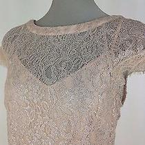 Jessica Simpson Nwt Blush Pink Lace Dress W Solid Pleated Bottom Size 12 Photo