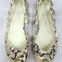 Jil Sander Snakeskin Flats Sz 37.5 or 7.5 Photo