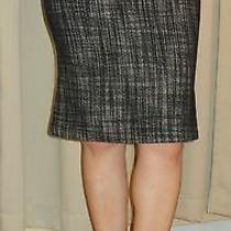 Jill Stuart Bodyhugging Flute Skirt Size 2/0/xsmall Nwot Sexy Chic  Photo