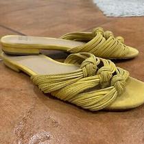 Joe's Jeans Women's Hazel Knotted Slide Sandal Size 6 Yellow Mustard Suede Photo