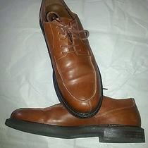 Johnston and Murphy Express Men Shoes  Photo