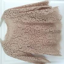Joie Lace Top  Photo