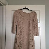 Joie Portia Lace Dress Photo