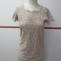 Joie Tan Nude Lace Sheath Tunic Lined Cotton Dress Size Xs O700 Photo