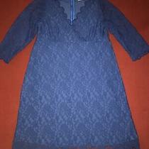 Jojo Maman Bebe Maternity Occasion Dress Lace Navy Blue Size 12 v-Neck Free Post Photo