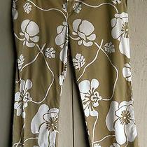 Junior 5 Quiksilver Roxy Tan & White Hawaiian Floral Capri Cropped Pants 29 X 24 Photo