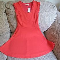 Juniors Blush Brand  Orange Waffle Dress Size Small Nwt Photo