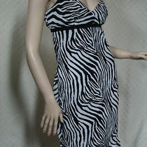 Juniors Dress Size 1 / 2 Casual Sleeveless Express Womens Clothing Animal Print Photo