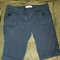 Juniors Navy Blue Vintage Havana Shorts Size M Photo