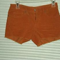 Juniors Size 1 Roxy Corduroy Shorts New Photo