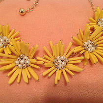 Kate Spade Field Floral Design Enchanting Charisma Necklace Photo
