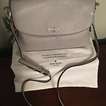 Kate Spade Purse Handbag Clutch Ash Gray. Nwt Photo