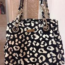 Kate Spade Shoulder Bag Photo