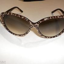 Kate Spade Soliel/s 01a5 Leopard Print Frames Cat Eye Sunglasses Photo