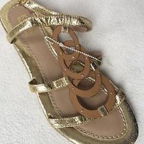 Kathy Van Zeeland Jerry Gold Sandals Straps Flat Gladiator Sz 7.5 Photo