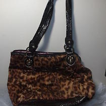 Kathy Van Zeeland Leopard Print Tote Shoulder Bag Gently Used Photo