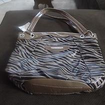 Kathy Van Zeelandv Luxury Collection Handbag Photo