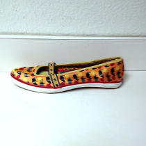 Keds  Colorful Bright Pretty Sneaker Shoes   Photo