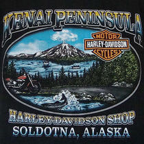Kenai Peninsula Harley Davidson T-Shirt Large L Soldotna Alaska Mountain Black Photo