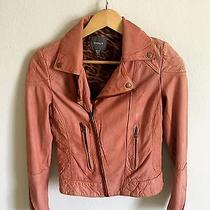 Kenna T Pink/blush  Animal Print Lining Quilted Leather Motorcycle Jacket S Photo