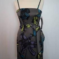 Kensie Bodycon Dress Size 4 Brand New With Tags 138 Photo