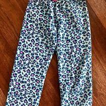 Kensie Girl Girls Blue Pink Cheetah Print Elastic Waist Pajama Pant M L 8 10 Med Photo