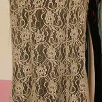 Kensie Mini Lace Dress Photo