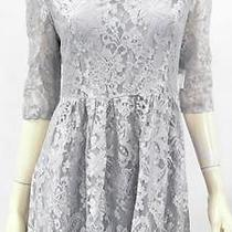 Kensie New Party Baby Doll M Lace Above Knee Dress Silver Womens Flare 38b6.1 Photo