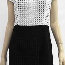 Kensie New Womens L Sequin High Waist Baby Doll Dress Short Formal Chop 4e4sz1 Photo