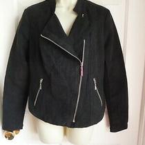 Kensie S Jacket Waist Line Black Lightweight Moto Cross Zip  Photo